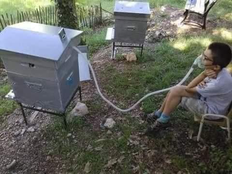 التنفس باستخدام هواء النحل